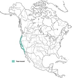 Distribution of the Wrentit. (From Birds of North America Online)