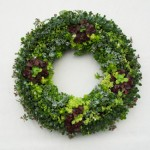 succulent-wreath-325
