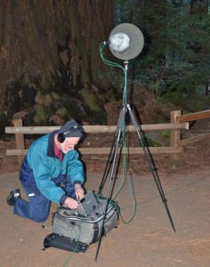 Dan Dugan at Muir Woods, photo by Sally Rae Kimmel