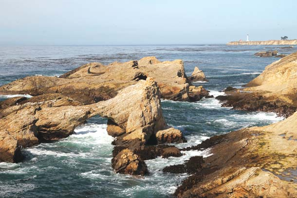 These rock reefs just offshore of the Stornetta Public Lands along the rugged coast south of the lighthouse are part of the little-known California Coastal National Monument. Photo by Meade Fischer