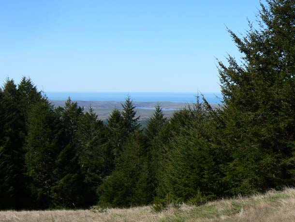 View of the peninsula from atop Mount Wittenberg, looking west.Photo by Jules Evens.