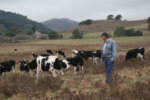 Randy Lafranchi on his ranch outside Nicasio.Photo by Susan Adele Colletta, www.calnaturalist.com.