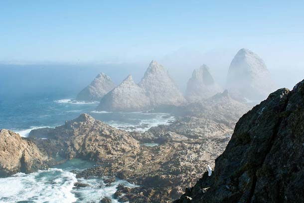 View looking north from a study blind on Southeast Farallon Island,
