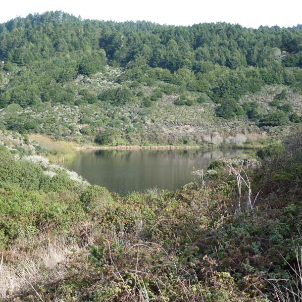 One of the natural ponds that Ocean Lake Loop trail encircles