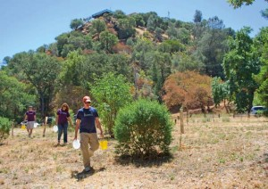 Save Mount Diablo volunteers