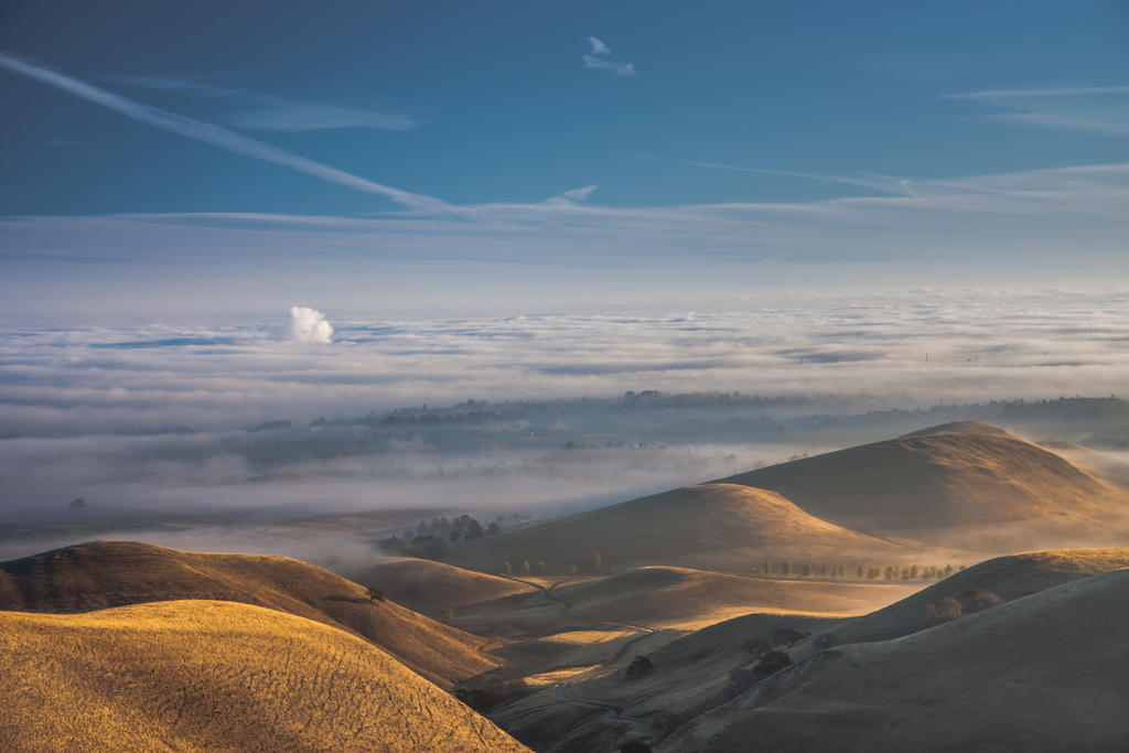 Black Diamond Mines Regional Park. Photo: Marc Crumpler.