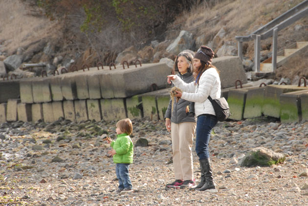 Audubon California seabird conservation manager Anna Weinstein (right) holds a handful of herring roe as she discusses the herring run with Lucille Glisson and Glisson's grandson Ross Yuster at Paradise Beach in Tiburon.