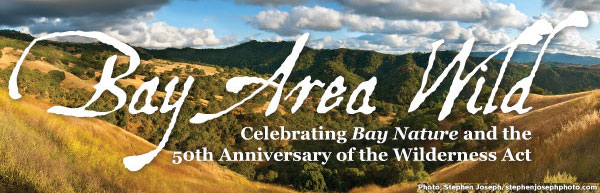 Bay Area Wild: Celebrating the 50th Anniversary of the Wilderness Act