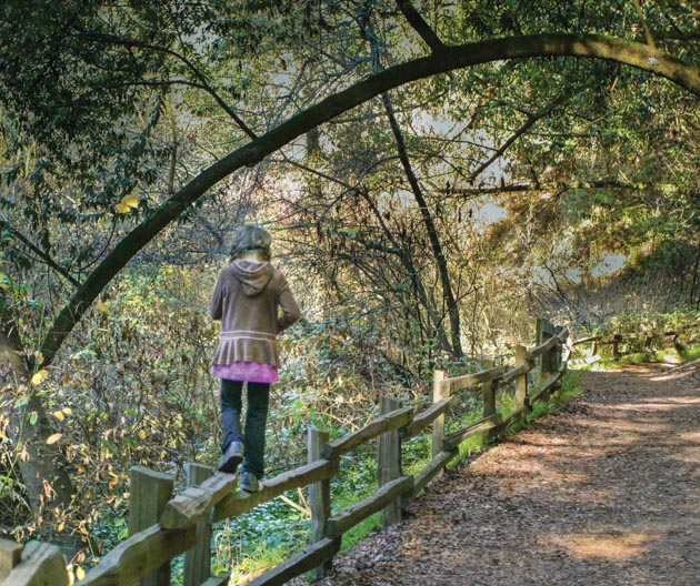 "Eighty years after the Park District's inception, parks like Tilden continue to offer  ""public enjoyment and physical stimulation"" to Bay Area residents of all ages. (Photo by Kathy Barnhart)"