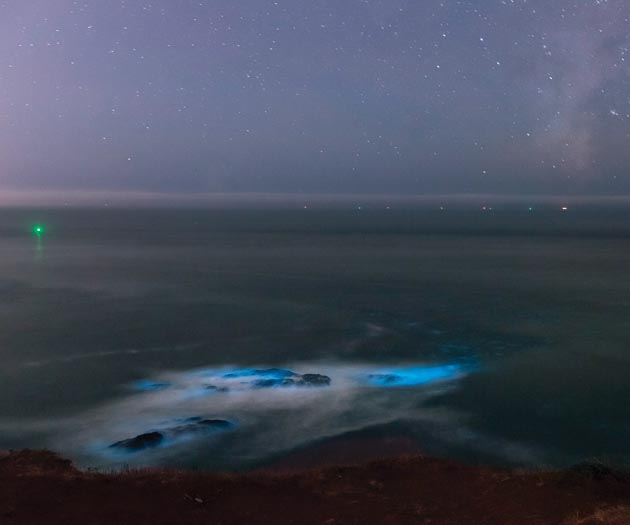 Bioluminescence glows in the waters of the Pacific just north of Rodeo Beach in the Marin Headlands. (Photo by Marsha Kirschbaum, https://www.flickr.com/photos/mkirschbaum/)