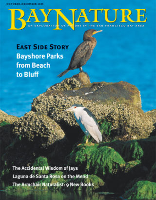 Oct-Dec 2005 cover