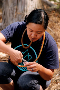 California Academy of Sciences post-doc Misha Leong deploys a pooter to capture a spider for examination in a small vial. (Photo by Victoria Schlesinger)