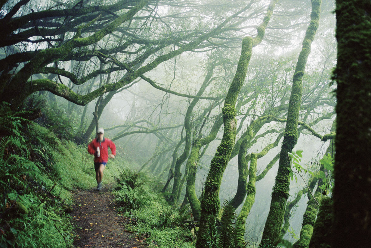 trail runner on Dipsea Trail