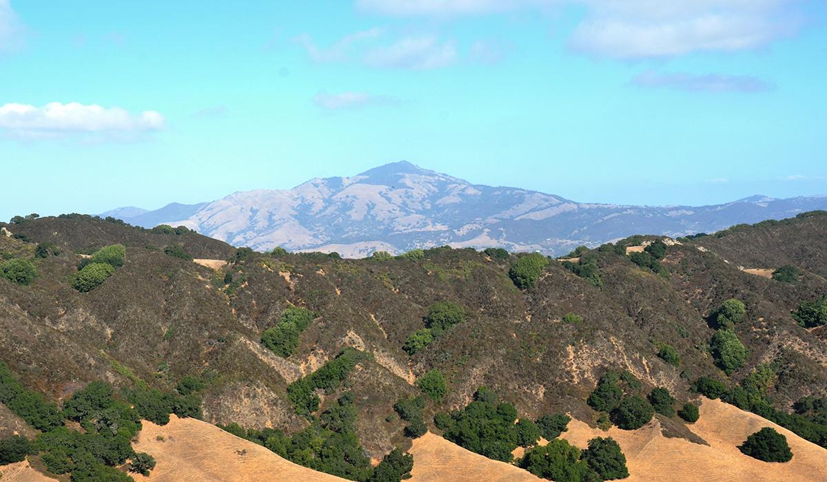 looking east at Mount Diablo